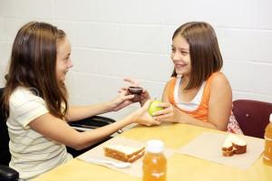 school-lunch-trade-2927485